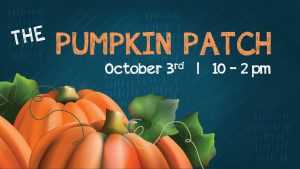 Pumpkin Patch Basic